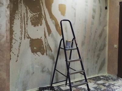 aerografiya-zebra, rospis-sten, брендирование, зебра граффити, граффити на стене, граффити на заказ, трафарет на стене, паттерн на стене, Санкт-Петербург, Москва, vsevdecor,